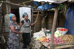 Bahir Dar Women, Children and Youth Support Project